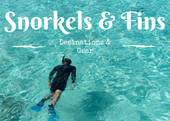 Snorkels & Fins Dive Gear & Guides
