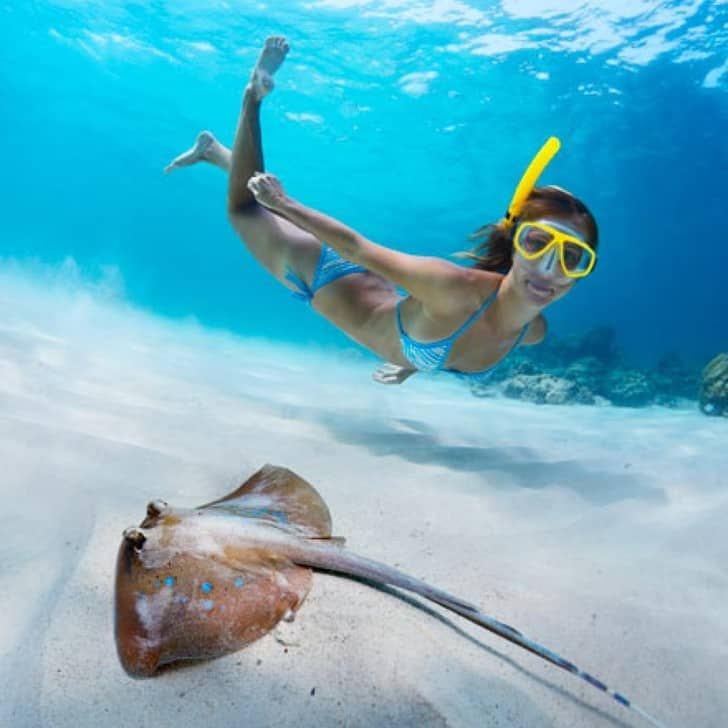 Cozumel Guide: Where to Stay, Eat & Snorkel - Girl Who ...