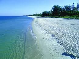 Best Snorkeling Naples Florida
