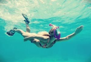 wildhorn snorkeling fins
