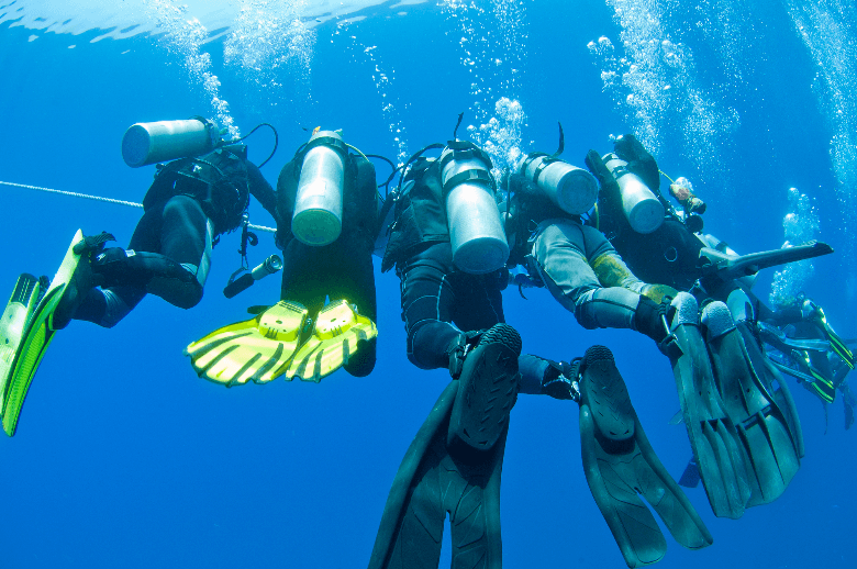 divers with misc fin models underwater